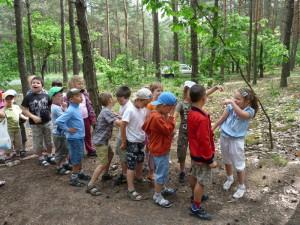 Lekcja w lesie