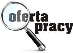 Dyrektor Placówki Opiekuńczo – Wychowawczej w Łasku ogłasza nabór na wolne stanowisko urzędnicze