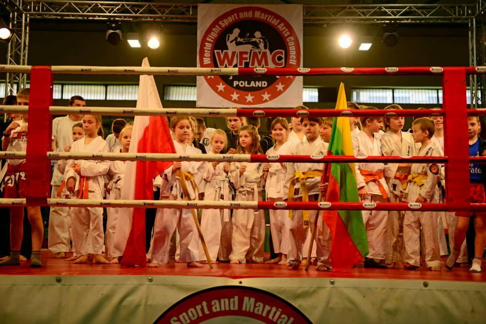 Otwarty konkurs ofert na wsparcie w 2015 r. realizacji zadań w sferze sportu